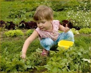 малыш в огороде