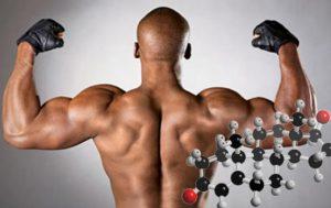 гормоны роста