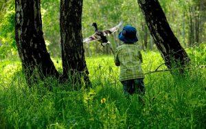 в лесу с ребенком