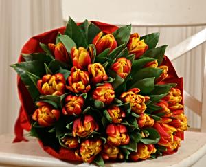 букет из попугайных тюльпанов
