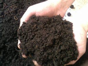 улучшить почву